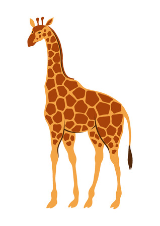 Stylized illustration of giraffe. Wild African savanna animal on white background. Vettoriali