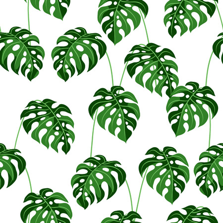 Seamless pattern with monstera leaves. Tropical jungle plants. Woody natural rainforest.