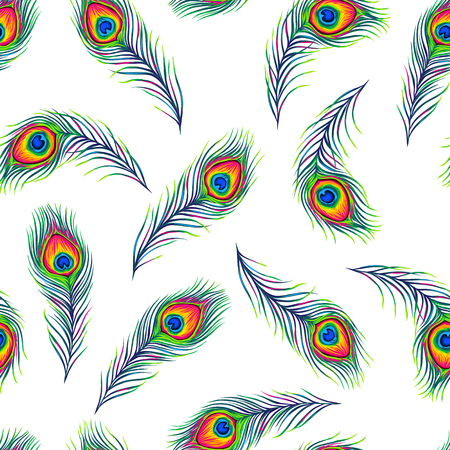 Peacock feathers seamless pattern. Color hand drawn exotic bird plumage. Vector Illustration