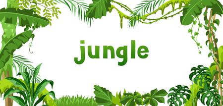 Hintergrund mit Dschungelpflanzen. Tropische Blätter. Waldiger natürlicher Regenwald. Vektorgrafik
