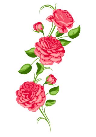 Elemento decorativo con rose rosse. Bellissimi fiori, boccioli e foglie.