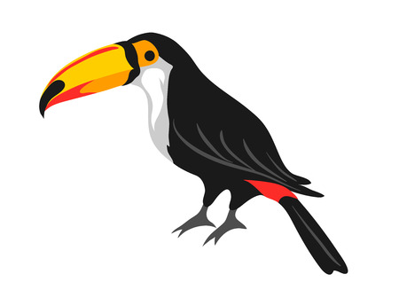 Illustration of toucan. Tropical exotic bird isolated on white background.