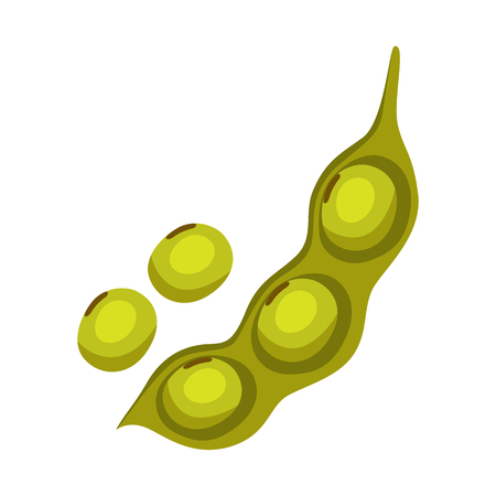 Soy bean pod icon. Illustration solated on white background. Standard-Bild - 120562464