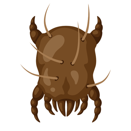 Icon dust mite insect. Illustration solated on white background. Иллюстрация