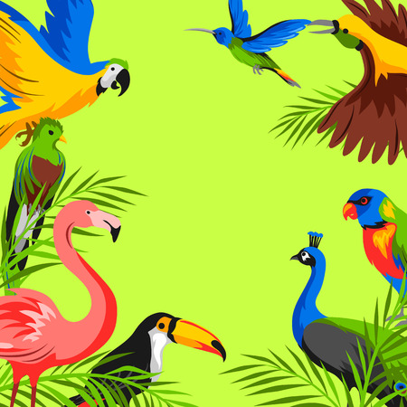 Background with tropical exotic birds. Wild fauna of jungle and rainforest.