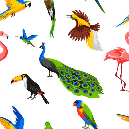 Wzór z tropikalnych ptaków egzotycznych. Dzika fauna dżungli i lasów deszczowych.
