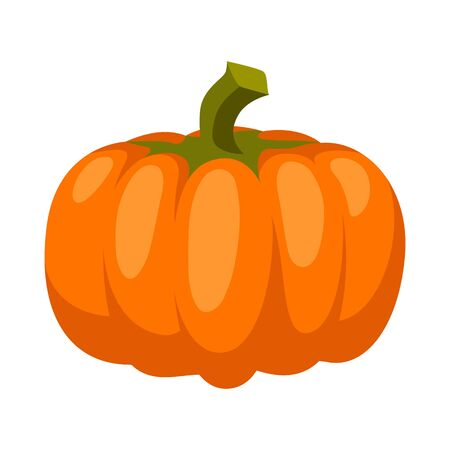 Cartoon illustration of ripe pumpkin. Autumn harvest vegetable.