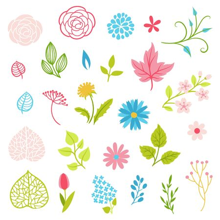 Set of spring flowers. Beautiful decorative natural plants, buds and leaves.