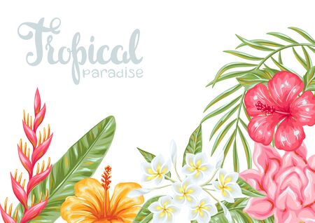 Tropical flowers and leaves. Decorative exotic foliage, palms and plants.