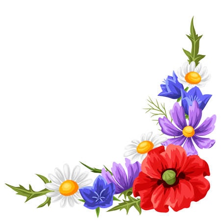 Decorative element with summer flowers. Beautiful realistic poppies, daisies and bells.