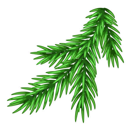 Illustration of spruce branch. Merry Christmas or Happy New Year decoration. Vetores