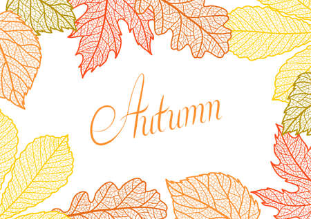 Card with autumn foliage. Background of falling leaves.
