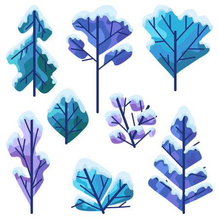 Set of winter trees. Natural stylized illustration of forest.