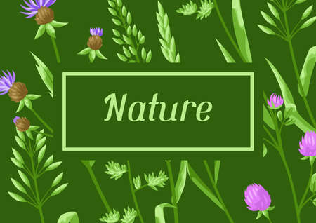Background with herbs and cereal grass. Floral design of meadow plants.