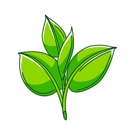 Illustration of sprout with leaves. Ecology icon or image for environment protection.