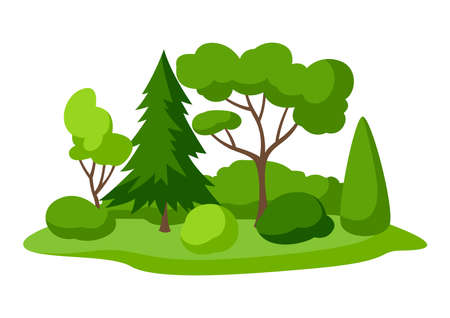 Background with trees, spruces and bushes. Summer or spring landscape. Seasonal nature illustration.