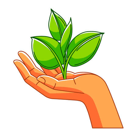 Illustration of hand holding sprout with leaves. Ecology concept or image for environment protection.