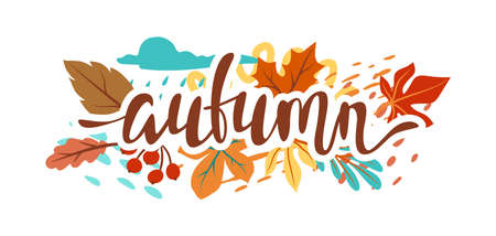 Floral background with autumn foliage. Illustration of falling abstract leaves.