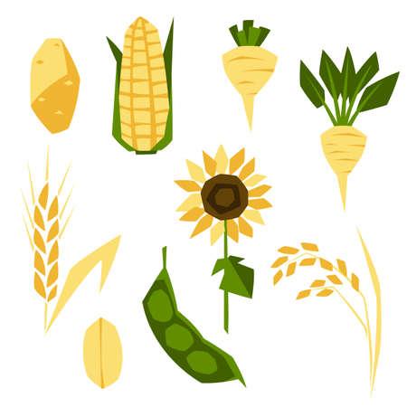 Set of agricultural crops. Harvesting stylized illustration. Vegetables and cereals.