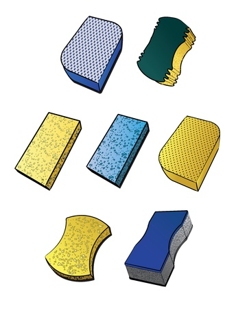 rinse: Illustrations of various types of sponges.