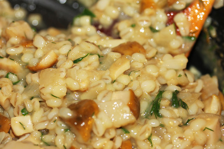 freshly cooked: Freshly cooked orzotto with mushrooms