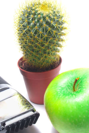 Cactus, an apple and hairclipper isolated on white background