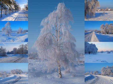 Winter collage road and birch