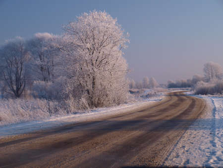 Winter road winds among trees frozen