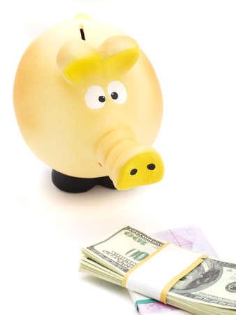 Pig piggy bank and money