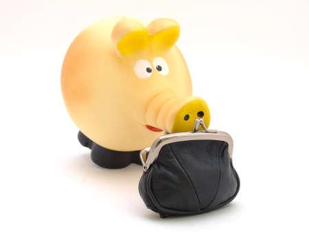 Pig piggy bank and money  photo