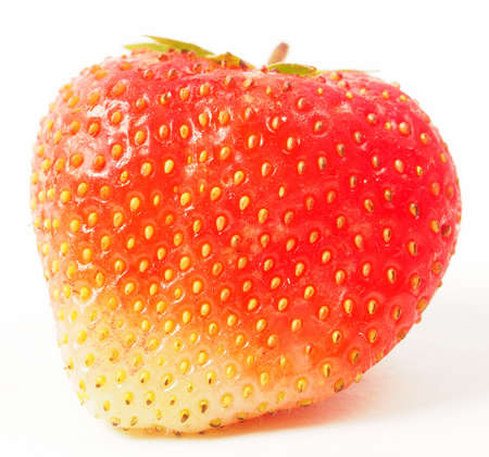 Red ripe strawberries on a white background