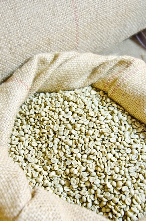 Coffee beans in Sack photo