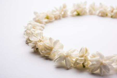 Jasminum sambac or Mogra Flower arranged in a circular or rectangular frame shape over white background, selective focus