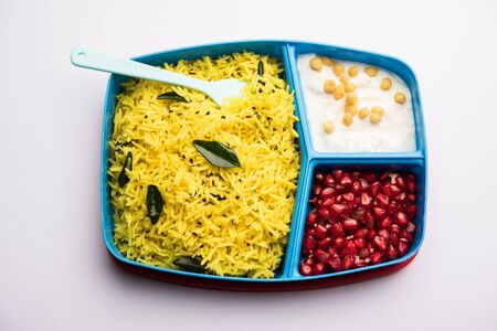 Lunch Box / Tiffin for Indian kids, contains lemon rice, nahi-boondi and pomegranate or Anar.