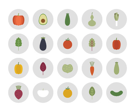 spinach salad: vegetables icons. vector illustration Illustration