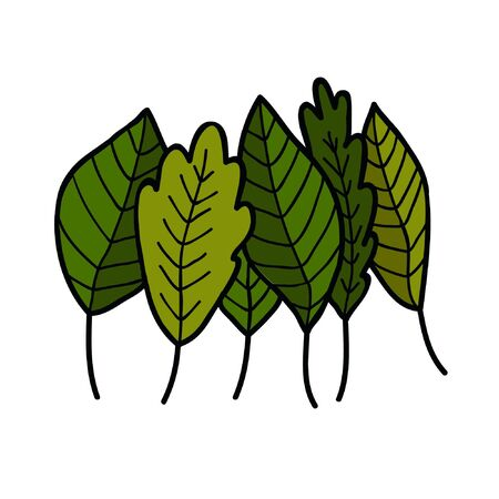 green leaves doodle icon, vector illustration Ilustrace