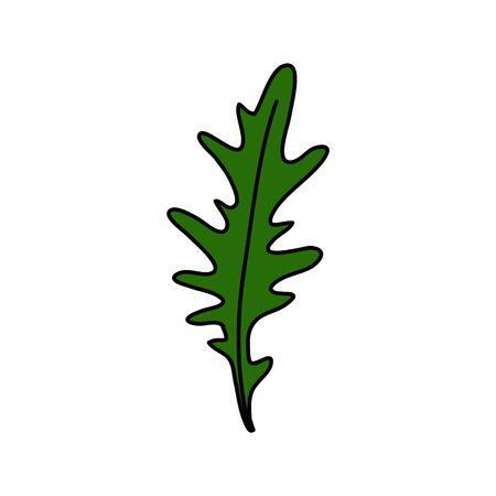 arugula doodle icon, vector color illustration Stock fotó - 138241868