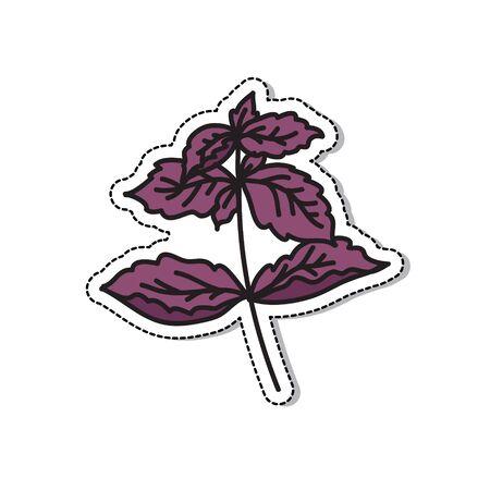 basil doodle icon, vector color illustration 向量圖像
