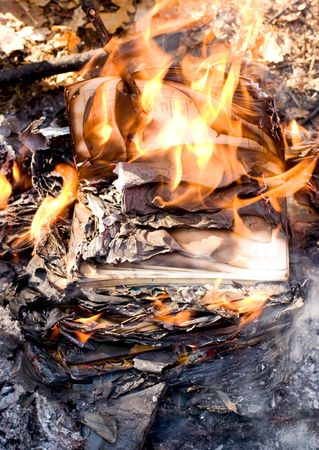 Flames and ashes of burnt documents