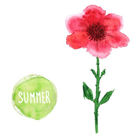 Acuarela Tarjeta Floral. Beautiful Vector Dibujado A Mano Textura ...