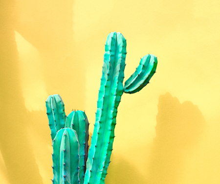 Cactus Fashion Set. Sweet Summer Style. Art gallery Design. Minimal fashion Stillife. Vanilla Trendy Pastel Colors. Green Neon Cactus Mood. Creative Unusual. Surrealism yellow background Banco de Imagens