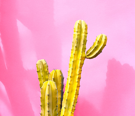 Cactus Fashion Set. Art gallery Design. Minimal Stillife. Vanilla Trendy Pastel Colors. Sweet Summer fashion Style. Yellow Neon Cactus Mood. Creative Unusual. Surrealism pink background. Pop art