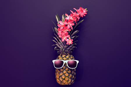 Pineapple Fruit Fashion Hipster. Beach Art Gallery Design. Minimal Style.. Summer party Mood, Night club. Zdjęcie Seryjne