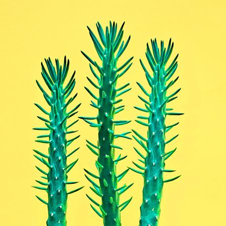 ネオン サボテン セット。最小限の方法 Stillife。アート ギャラリー デザイン。バニラのトレンディな明るい色します。緑のサボテン気分、黄色のシ