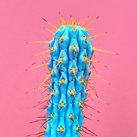 Cactus Neon. Art Gallery Fashion Design. Minimal Stillife. Concept on pink background. Detail Banco de Imagens