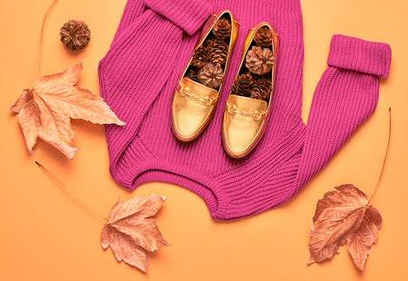 arrives: Autumn Arrives. Fall Fashion Woman Clothes Set. Design.Trendy Pink Knit Jumper. Fashion Stylish Glamour Shoes. Yellow Fall Leaves. Retro. Falltime Stock Photo