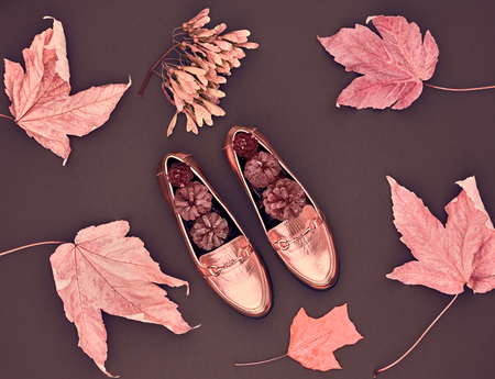 Fall Fashion Design. Fall Leaves Background. Trendy fashion Stylish Glamour Shoes. Autumn Vintage Stock fotó