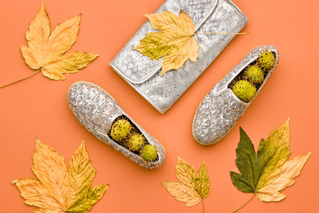 Fall Fashion Glamour Lady Look.Trendy Handbag Clutch. Fashion Stylish Glamour Shoes. Yellow Fall Leaves. Autumn Minimal. Vanilla Pastel colors.