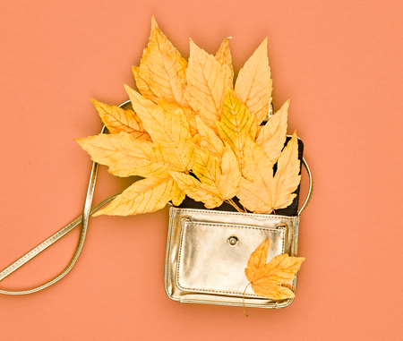 Autumn Minimal Design. Fall Fashion. Trendy Stylish Glamour Gold fashion Handbag Clutch. Yellow Fall Leaves. Vanilla Pastel colors.