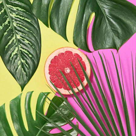 Tropical Palm Leaves and Fresh Pink Grapefruit. Creative Summer Trendy Design Set. Colorful Fashion concept. Bright summer background, Beach. Minimal Art
